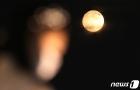 코로나시대... 한가위 보름달