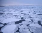10월말인데 시베리아 앞바다가 얼지 않는다…사상 첫 '기후재앙'