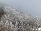 [오늘의 날씨] 대구·경북(24일,토)…내륙·산간에 서리·얼음