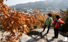 가을 단풍철 산에 올라