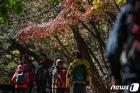 가을산 오르는 시민들