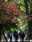 단풍철 '가을산 오르는 시민들'