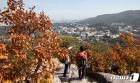 가을옷 갈아 입는 서울 산 찾은 시민들