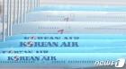 법정까지 간 대한항공-아시아나항공 합병