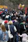 나들이객들로 북적이는 서울대공원
