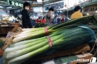 '금파'된 대파, 소비자물가지수 14개월만에 최대 상승