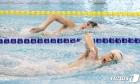 도쿄에 태극기 올리기 위해 노력하는 수영 대표팀