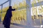 '세월호 희생자 추모하는 우원식 당권주자'