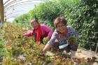 나주시, 여성농어업인 행복바우처 카드 발급 시행