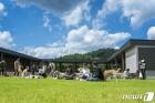 국내 최대 반려견 테마파크 '강아지숲' 정식 오픈