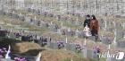 '4·19 민주묘지 찾은 시민들'