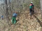 장흥군, 주민이 피부로 느낄 수 있는 숲 가꾸기 사업 추진