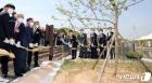 과학의 날 기념식, 뉴턴의 사과나무 식재