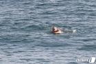 G7 정상회의장 인근 해안서 수영하는 존슨 총리