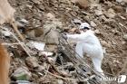 광주 동구, 재개발 철거현장 등 13곳 긴급 안전점검